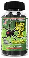 Cloma Black Spider